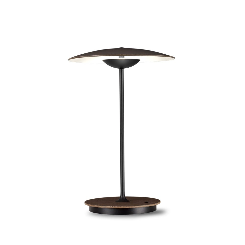 Ginger Portable Table Lamp