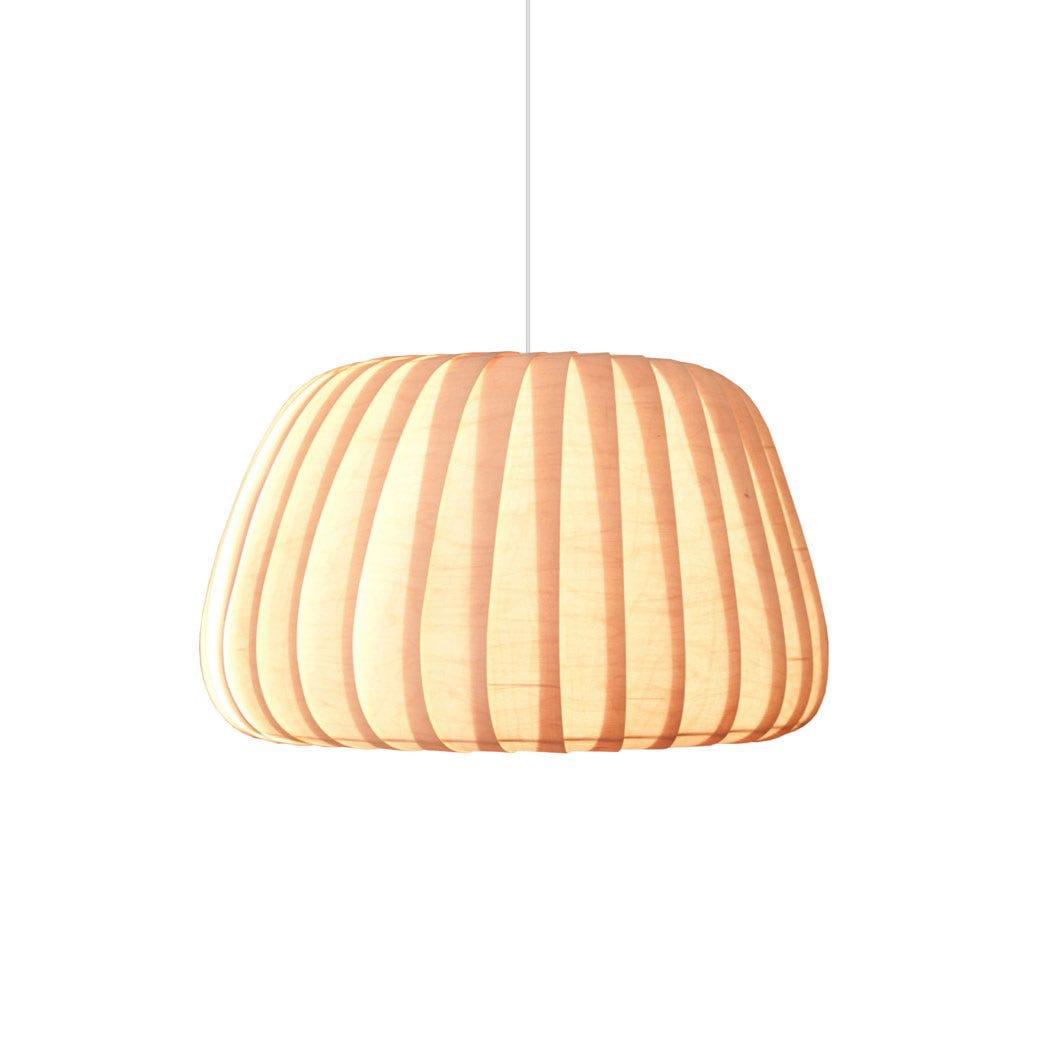 TR19 Pendant Light