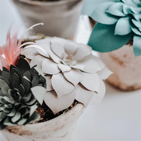 Handcrafted Paper Plants Workshop with Sarah Dennis | Westfield London | 11th May | 11am - 1pm