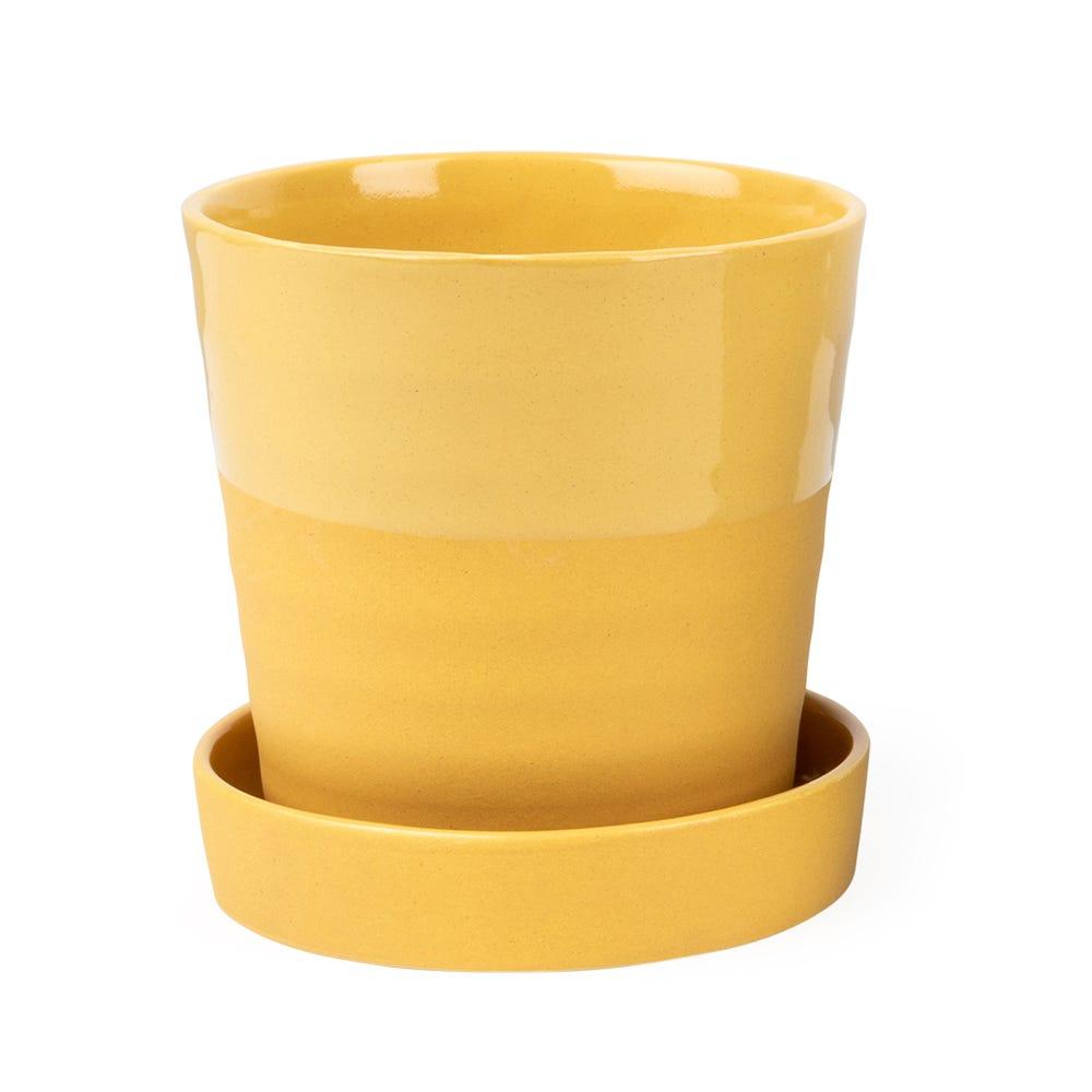 Crinkle Planter Mustard